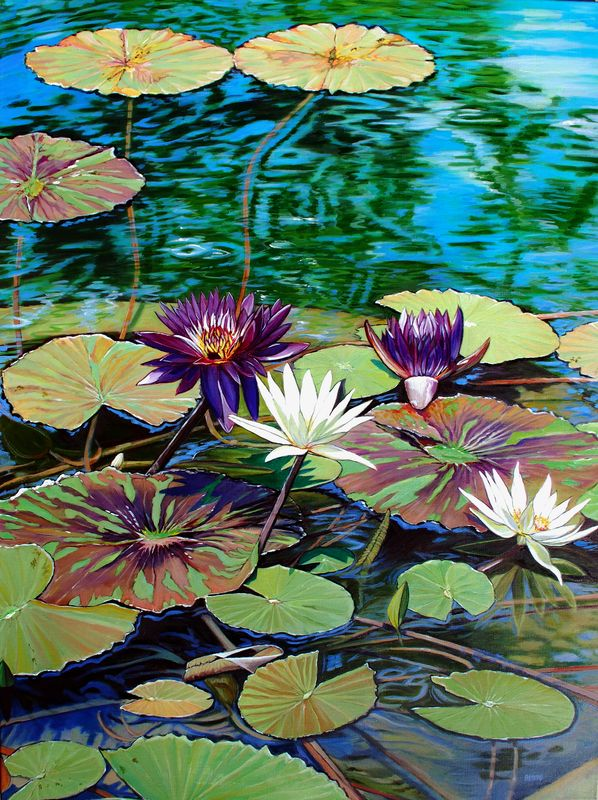 Water Lillies with Purple Flowers
