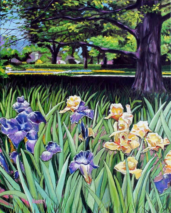 Iris and Big Oak Tree