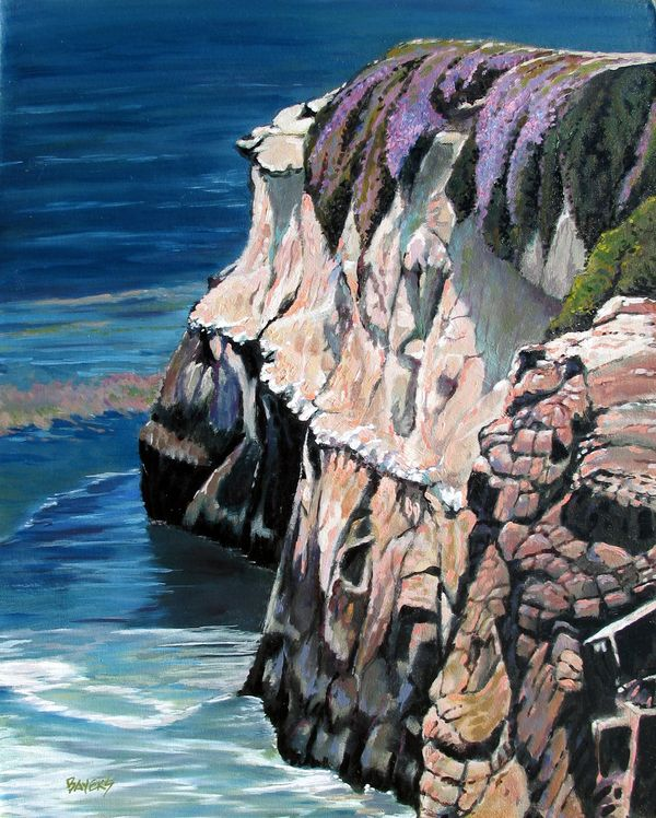 seaside cliff with purple flowers