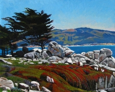 pebble beach with rocks and red fkowers